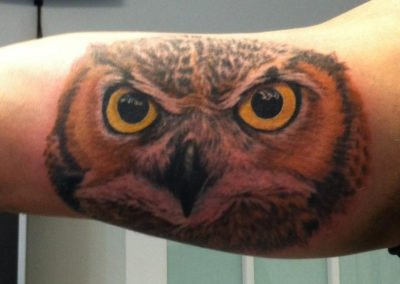 image of an owl tattoo on a mans arm done by Shawn Pierce of Skin Deep